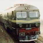 NF1-800